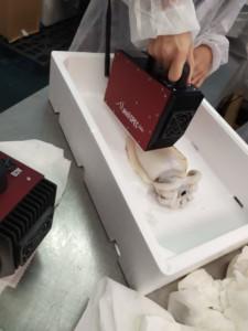 spettrofotometria nel settore ittico